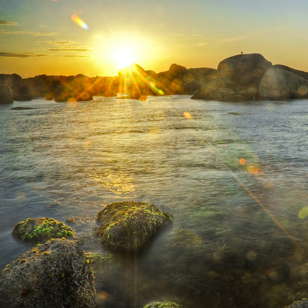 Sunset on Beach Wallpaper 1024